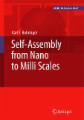 Self-Assembly from Nano to MILLI Scales
